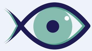 oeil medobs