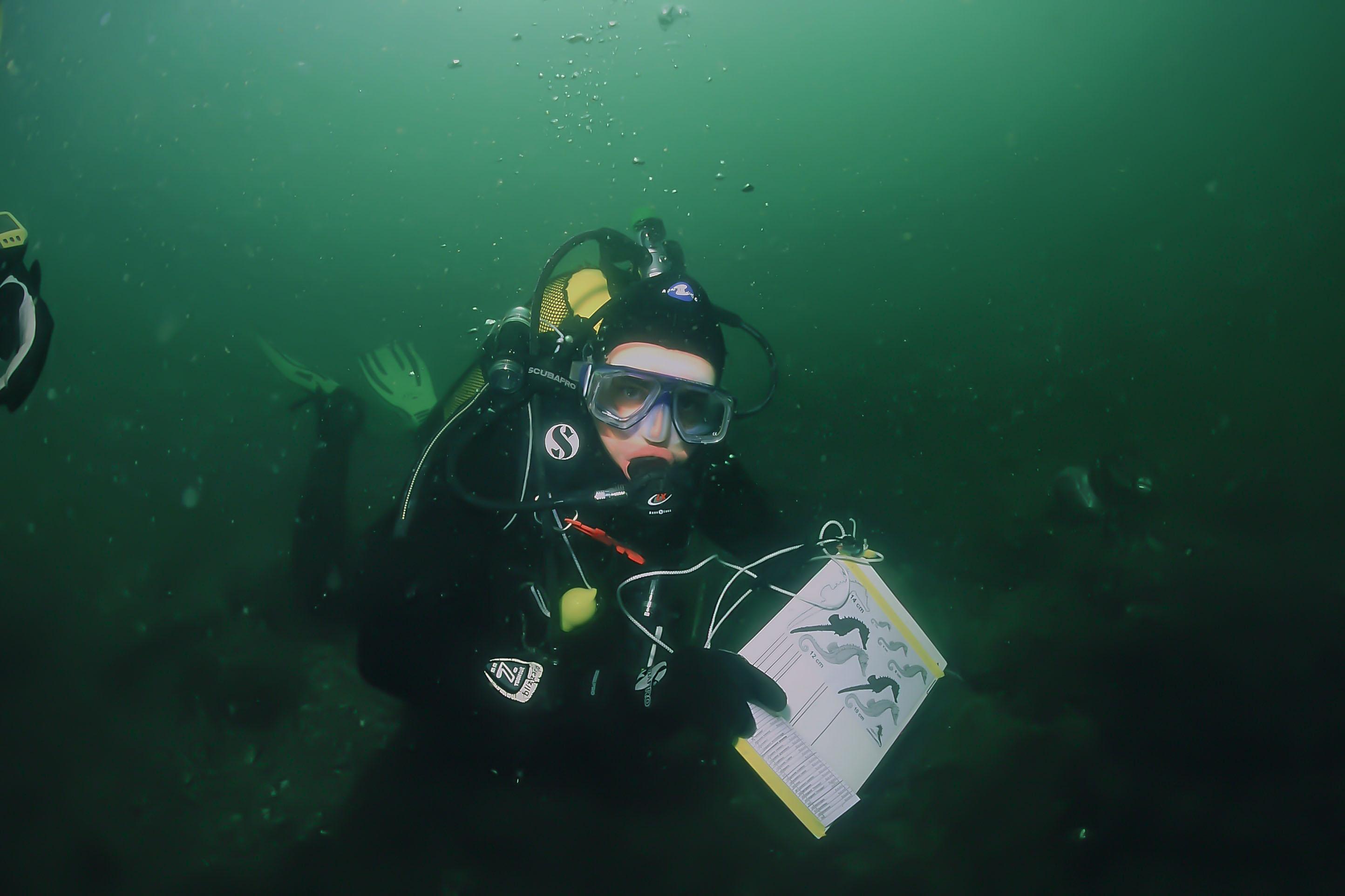 Patrick Louisy_Peau-Bleue_plongeur Hippo-THAU